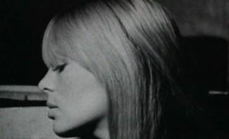 Shirin / Warhol