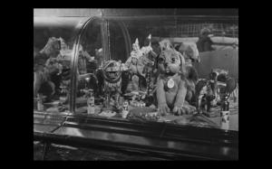 3.Fetiche mascotte_Starewitch