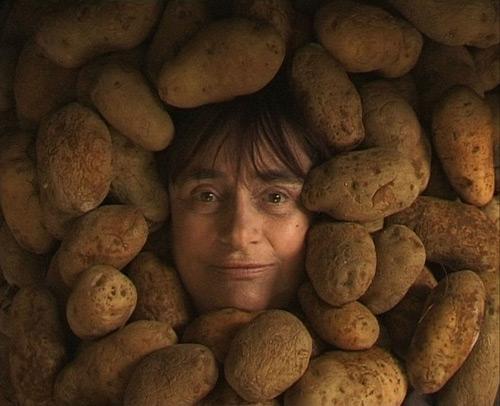 varda-pomme-du-terre