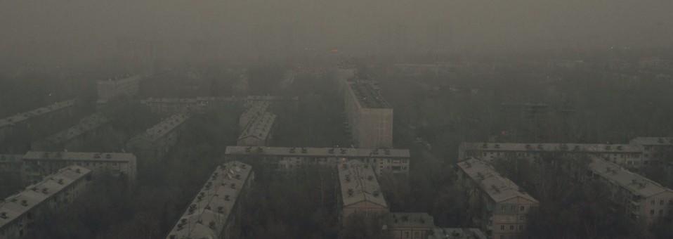 La Nueva Ola del cine kazajo en el Festival de Moscú 2015