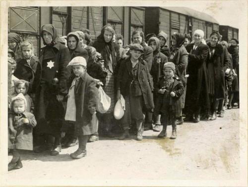 Trenes_Auschwitz
